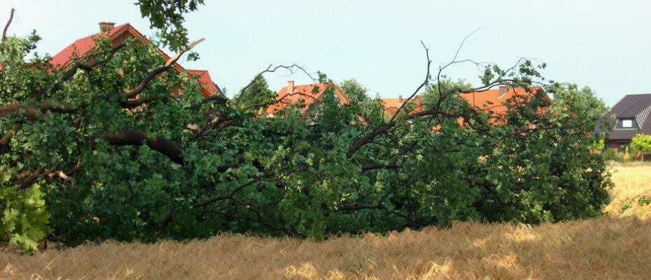 Unwetter über Wallenhorst