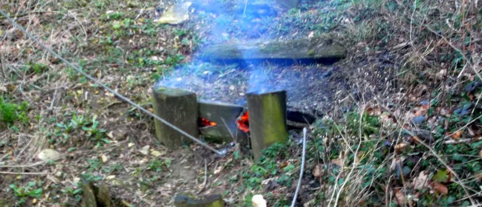 Read more about the article Stromleitung durch Baum gekappt