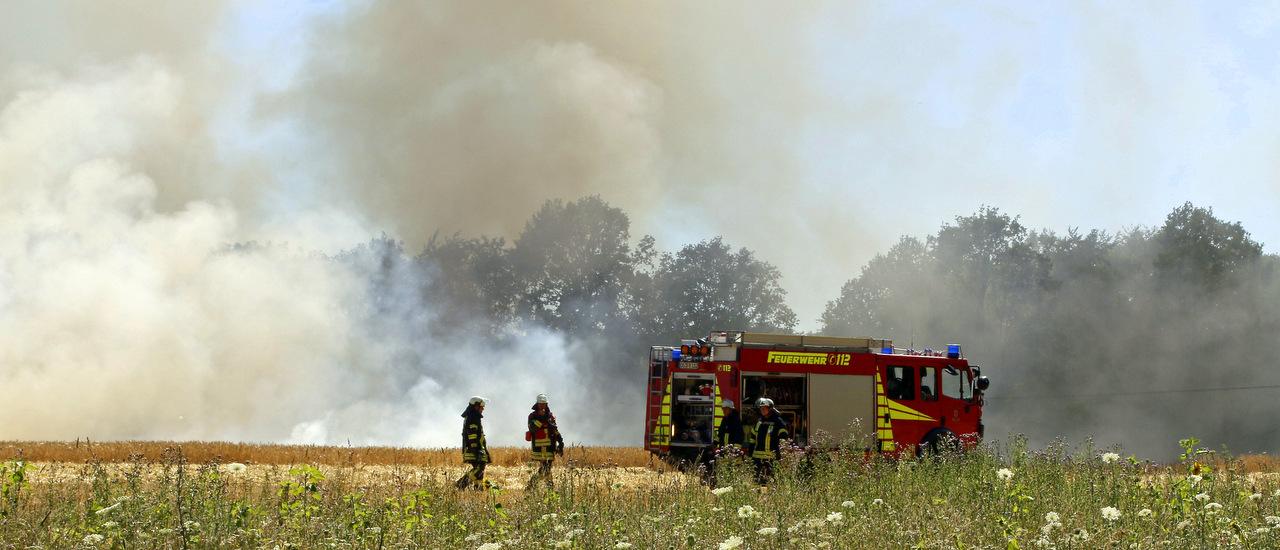Flächenbrand in Icker