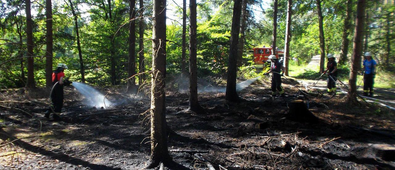 Waldbrand am Erftenbecksweg